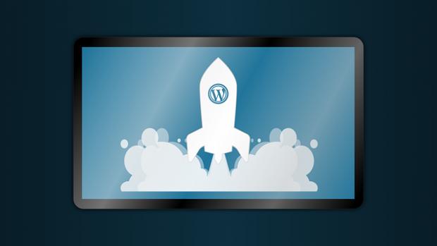 wordpress kurulum hizmeti